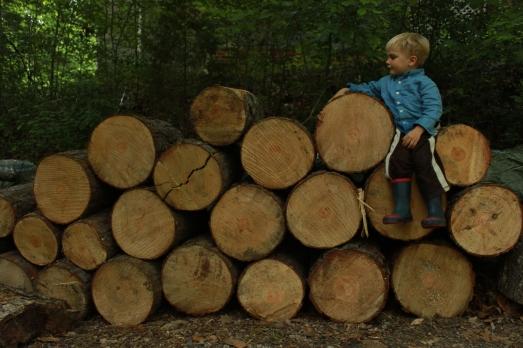 Lumberjack Judah.