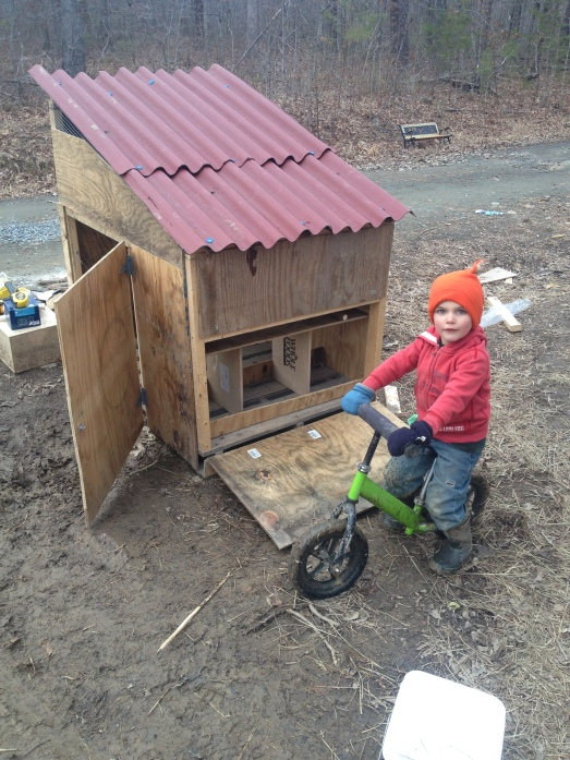 Exterior view of nesting box door (+ Judah)